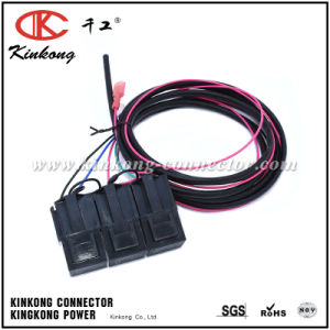 Auto Wire Harness Custom Relay Cable Harness Assembly Wd014 pictures & photos