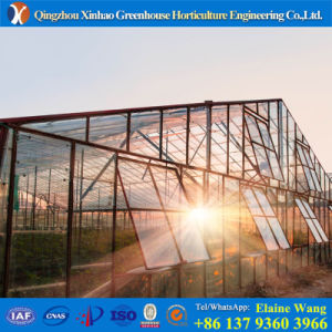 Promotion Double Layer Glass Agricultural Green House for Tomato pictures & photos