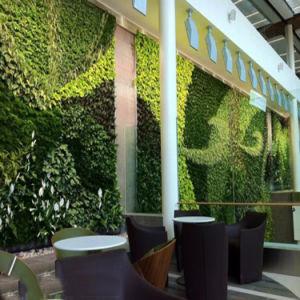 Living Vertical Grass Garden Wall Decoration pictures & photos