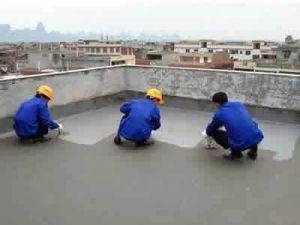 Js Cement Waterproof Emulsion pictures & photos