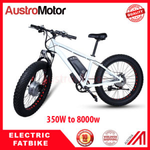 Fat Tire Electric Bike with 1000W Motor pictures & photos