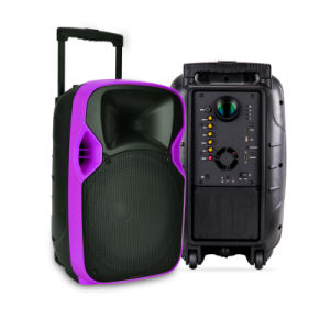 12 Inches PRO Portable LED Projection Speaker Box with Battery pictures & photos