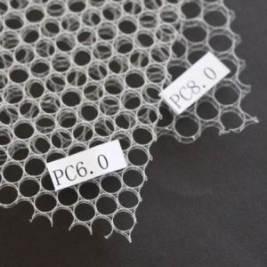Plastic Honeycomb Board (PC6.0 orange/red) pictures & photos
