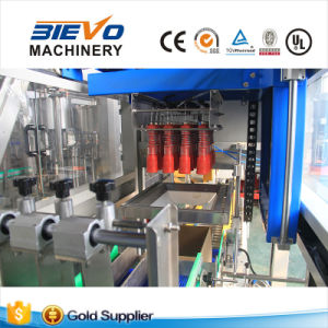 Automatic Custom Folding Cartons Packing Machine for Bottles pictures & photos