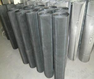 Black Wire Cloth/Black Iron Wire Mesh for Air/Liquid Filter pictures & photos