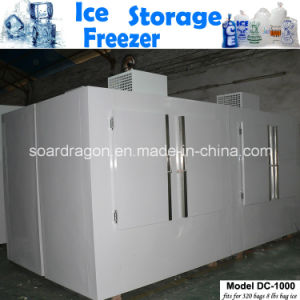 Big Capacity Ice Storage Freezer of 150 Cuft pictures & photos