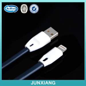 Wholesale Cell Phone Case Accessoies USB Charger Cable for iPhone pictures & photos