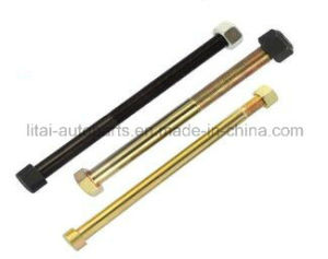 Fast Delivery Grade 8.8 /10.9 Center Bolt pictures & photos