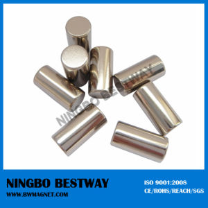 Irregular Shaped Cylinder Permanent Magnet pictures & photos