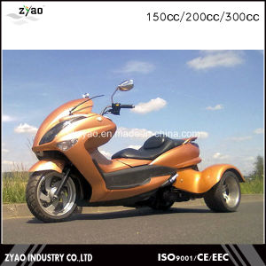3 Wheeler ATV for Adults EEC Trike Hot Sale in Japan 200cc/300cc Trike pictures & photos