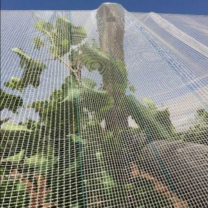 Anti Hail Net for Grape Vines/ Orchard Apple Tree Anti Hail Net pictures & photos