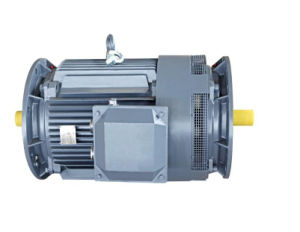 Y2e Series Three-Phase Asynchronous Motor pictures & photos