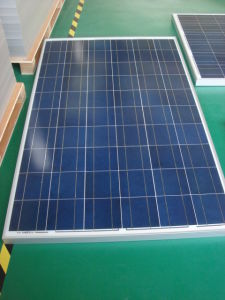 Dokio 140W Poly Crystalline Solar Panel pictures & photos