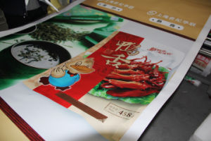 Indoor Full Color Printing PP Synthetic Banner for Advertising pictures & photos