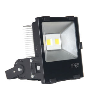 Outdoor LED Floodlight with IP65 pictures & photos