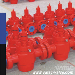 Cast/Forged Steel 2000psi~20000psi RF Flange API 6A Check Valve pictures & photos