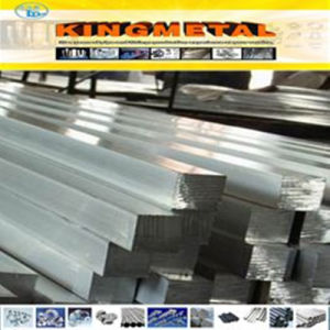 300 Steel Series Stainless Steel Square Bar pictures & photos