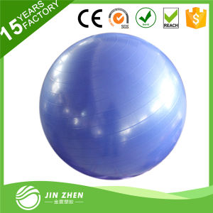 Anti-Burst Exercise Stability Gym Ball with Pump