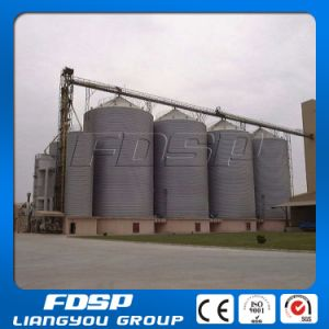 Poultry Feed Silo for Chicken Broiler Farm pictures & photos