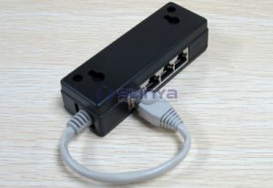 12cm Cable Ethernet Coupler 8p8c 1 Male to 4 Female Splitter 4 Ports RJ45 Adapter pictures & photos