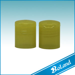 (D) Plastic Transparent Flip Top Cosmetic Cap