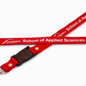 Cheapest Lanyard Flash Drive Attach for Business Card pictures & photos