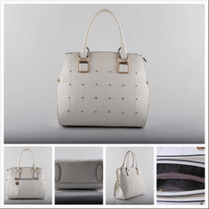 Ladies Hand Bag 2016 New Design Style (NM-W02)