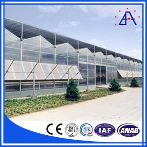 Anodized 6063-T5 Aluminum/Aluminium Extrusions for Greenhouse Frame pictures & photos
