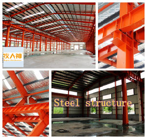 Poultry House Construction with Professional Equipment From China Manufacturer pictures & photos