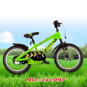 "BMX Style Bike 20"" pictures & photos"