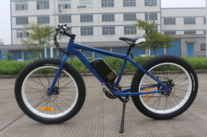 36V 250W Fat Tyre Mountain Electric Bicycle with Brushless pictures & photos