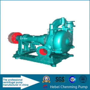 China Horizontal Industrial Gold Gravel and Sand Pump pictures & photos