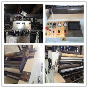 Automatic Water Soluble Film Coating Machine pictures & photos