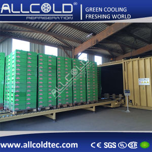 Lettuce/Broccoli/Mushroom Vacuum Pre-Cooling Machine EU Standard pictures & photos