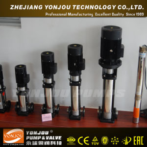 Booster Pump for Water (QDL) pictures & photos