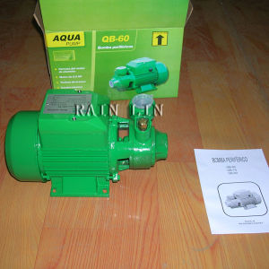 220V 60Hz Qb60 Water Pump with Termal Protector Single Phase Pump pictures & photos