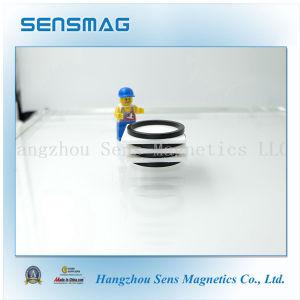 Professional Ring Permanent NdFeB Neodymium Magnet for Generator pictures & photos