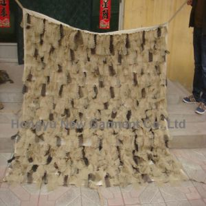 Military Camouflage Netting, Hunting Tactical Camo Net Desert (HY-C012) pictures & photos