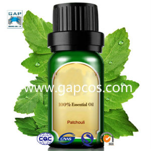100% Natural Patchouli Oil Essential Oil