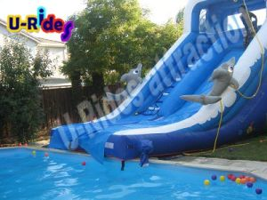 5m Long Inflatable Slide for Pool or Beach pictures & photos