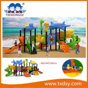 China Amusement Park Outdoor Playground Equipment Txd16-Bh088 pictures & photos
