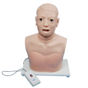 Electronic Monitor Clinical Use Pharynx Larynx Examination Equipment Model pictures & photos