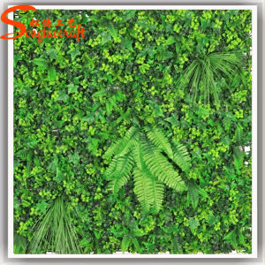 Office Decoration Artificial Fake Plant Wall pictures & photos