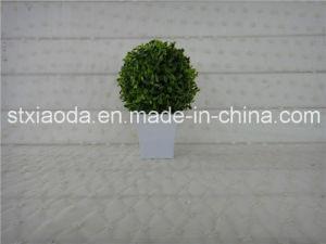 Artificial Mini Bonsai (XD14-237)