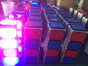 Blue Red Yellow Module LED Solar Yellow Warning Light Road Safety Warning Flashing Traffic Light Sale pictures & photos