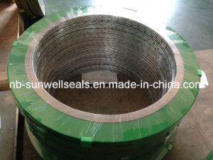 Spiral Wound Gasket with Green Epoxy Coated pictures & photos