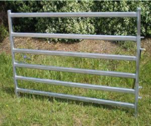 Heavy Duty 6rails Horse Fence pictures & photos
