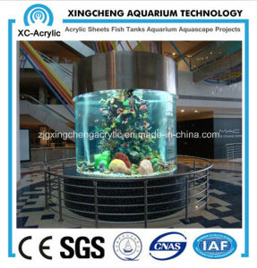 Acrylic Fish Tank / Aquarium Manufacturer pictures & photos