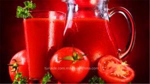 Good Price Tomato Paste From China