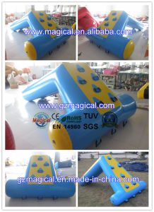Commercial Mini Inflatable Water Slide for Kids Inflatable Water Toys (MIC-055) pictures & photos